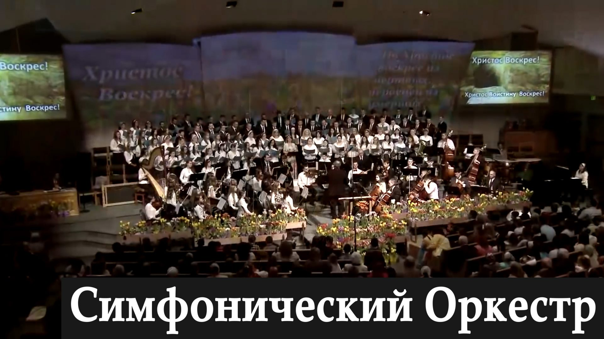 simphorchestra